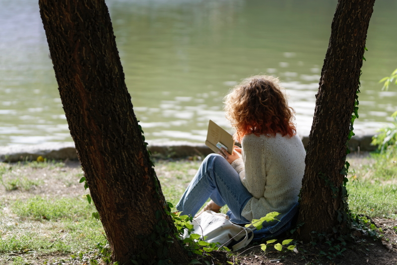 Child sat under a tree reading a book