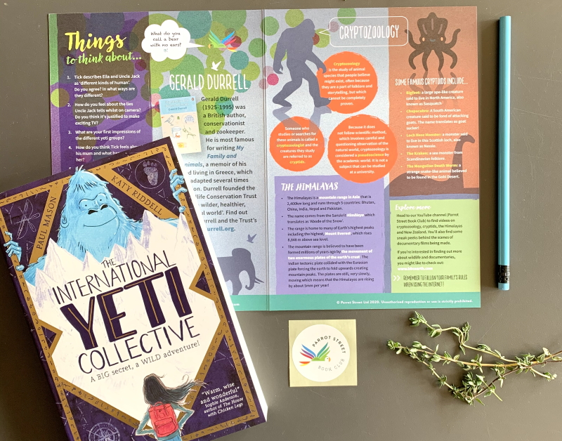 The International Yeti Collective book and activity pack